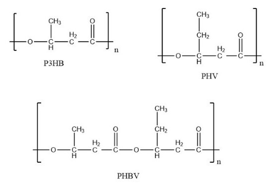 FIG. 1 | 3HB and 3HV Monomers and PHBV Unit